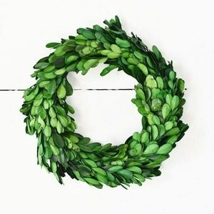 """Preserved Boxwood Small 8"""" Wreath"""